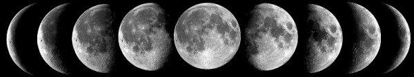 Demi lune prologue #Fishy