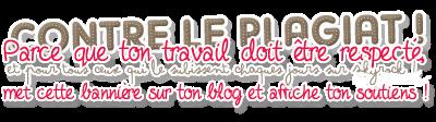 Bienvenue à tous a mon blog