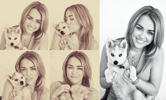 Miley Cyrus (l)