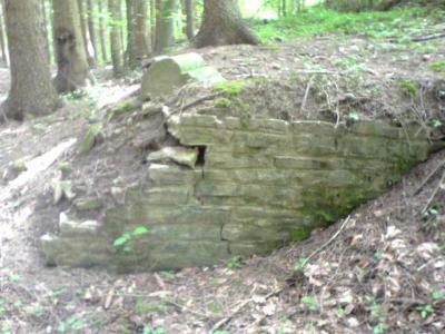 voici ce qui reste du premier cimetière 14/18 au bois du mat a Bleid