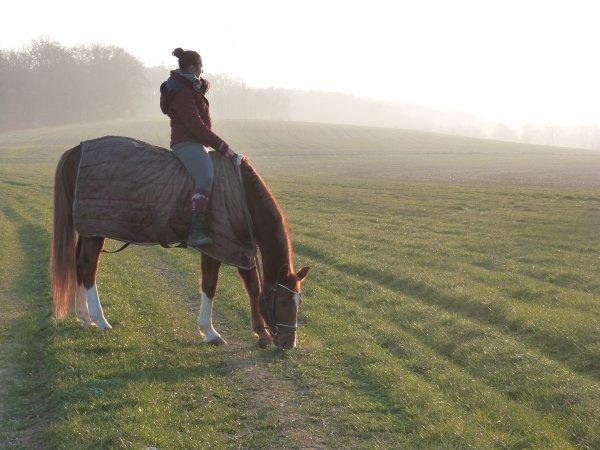 « C'est une drogue douce le cheval, une raison de vivre quand la vie est difficile. »