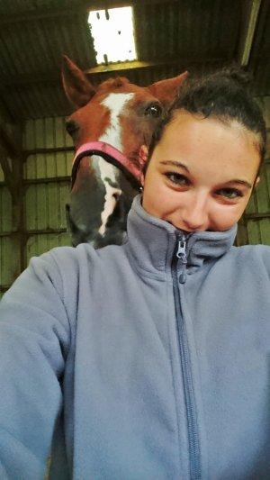 « Parce-que la base de l'équitation, c'est le lien de confiance que crée le cavalier avec sa monture »