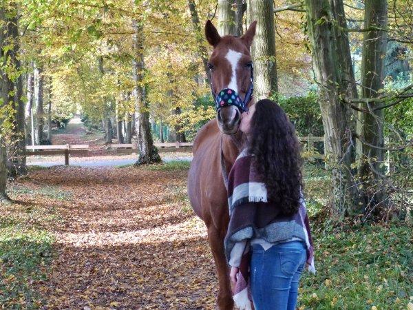 """« J'espère qu'un jour ils comprendront que ce n'est pas """"simplement un cheval"""" mais bel et bien l'être qui m'a donné l'humanité, celui qui donne un sens à ma vie et qui m'empêche de n'être que """"simplement une femme"""". »"""