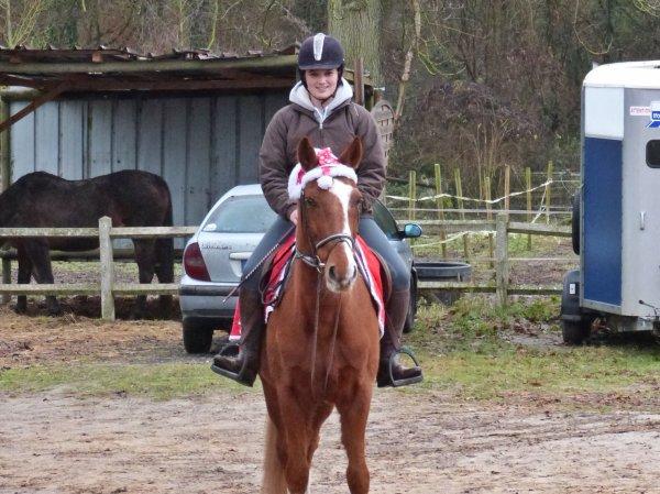 « Un poney est un rêve d'enfance, un cheval est un trésor d'adulte. »