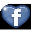 » ARTICLE N°O1 → Retrouvez-nous sur Facebook !