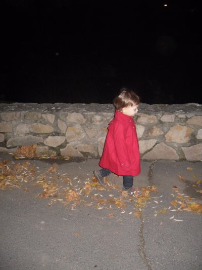Le 18 novembre 2010