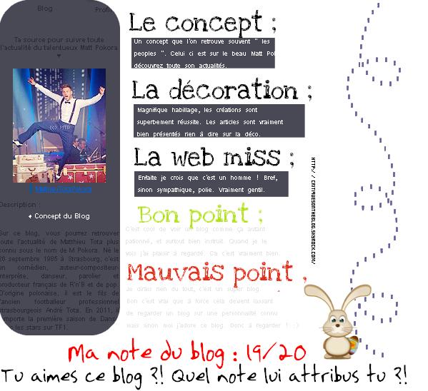15 - Critique MathieuTotaPokora