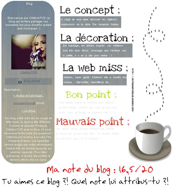 16 - Critique CitationTVD