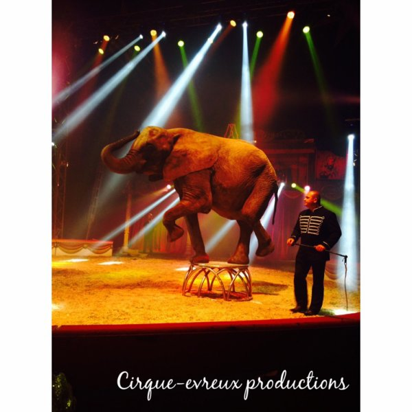 ••Cirque Amar spectacle 2015••