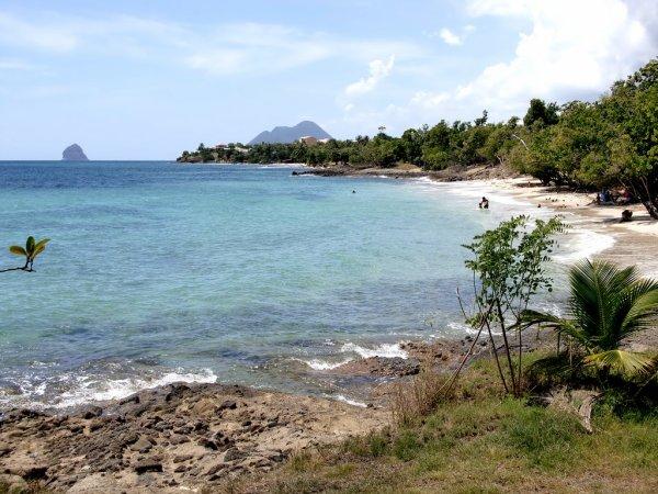 Martinique sainte luce plage de fond larion 3 - Sainte luce martinique office du tourisme ...