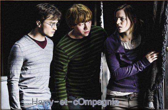""""""" Tu as vu les Fizwizbiz , Harry ? dit Ron en l'emmenant près du tonneau . Et les Gommes de Limaces  ? Et les Suçacides ? Fre m'en a donné un quand j'avais 7 ans _ ça m'a fait un trou au milieu de la langue . Je me souviens que Maman lui a donné des coups de balai ."""" -- Harry Potter Et le Prisonnier d' Askaban ."""