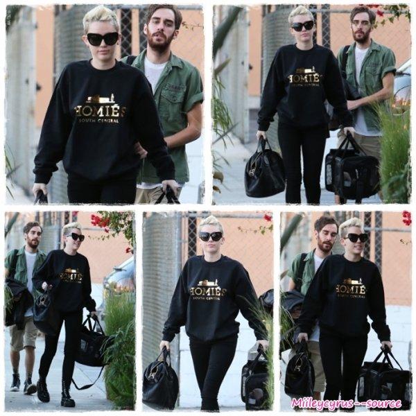 Miley et son nouveau chien + des news