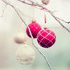 welcome christmas.