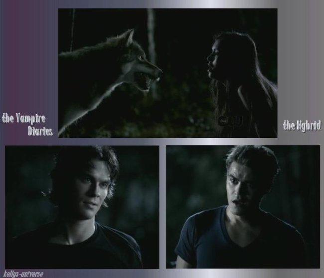 The Vampire Diaries ep 3 X 2 The Hybrid