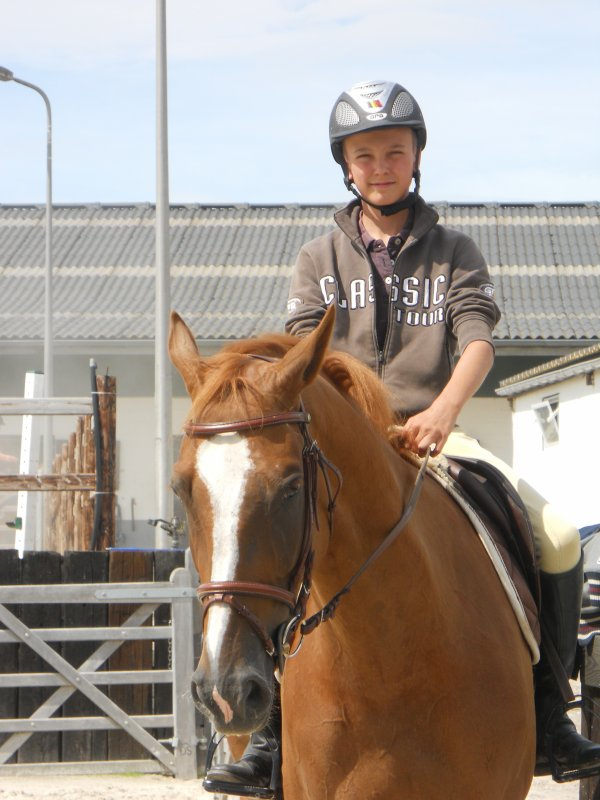 lui <3se cavalier formidable et son cheval <3