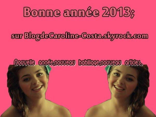 Bonne année 2013!