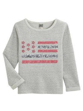 Tee -  Shirt à manches longues gris avec motif imprimé drapeau des Etats - Unis 2/14 ans
