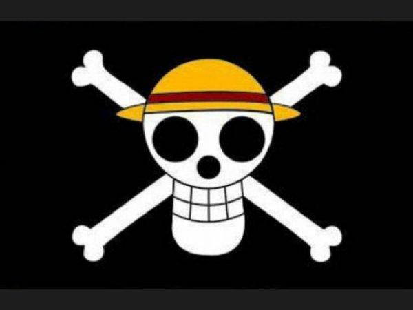 Le drapeau du chapeau de paille