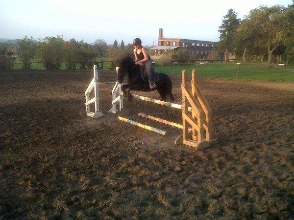 Ne faire plus qu'un avec son cheval ,  C'est ce que tous cavaliers recherchent .♥