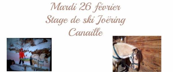 SKI JOERING 2013: Centre Equestre des Carroz