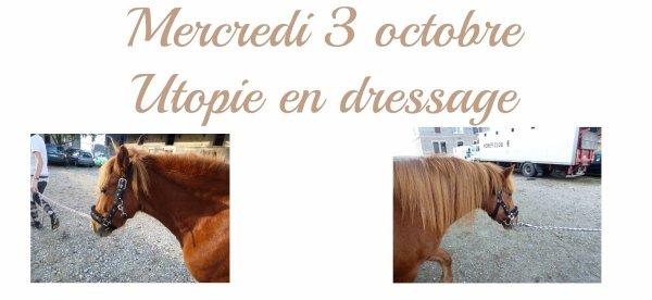 MERCREDI 3 OCTOBRE: Utopie en dressage