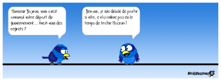les ptits bleus