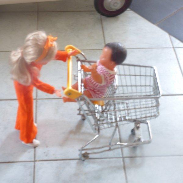 Trouvailles du   Dimanche 11 Septembre au  vg  de liffre 35;;;;;;;;;;;;;;;;Dolly est contente elle va pouvoir faire ces courses..............la 1 ere fois que j  en vois un de cette taille fidela a ceux de nos supermarches et je confirme il est tres lourd