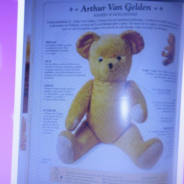 Ours identifier grace a une amie voici ARHUR  VAN GELDEN ours  hollandais