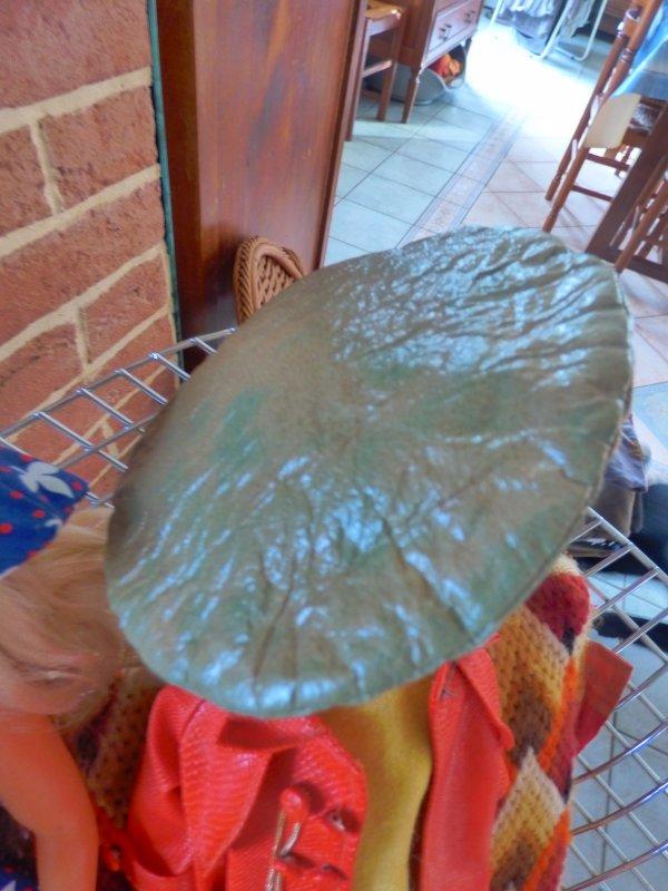 cherche a  identifier beret simili vert peu etre a cathie  cadeau de la vendeuse a qui j ai acheter ma cathie collant blanc