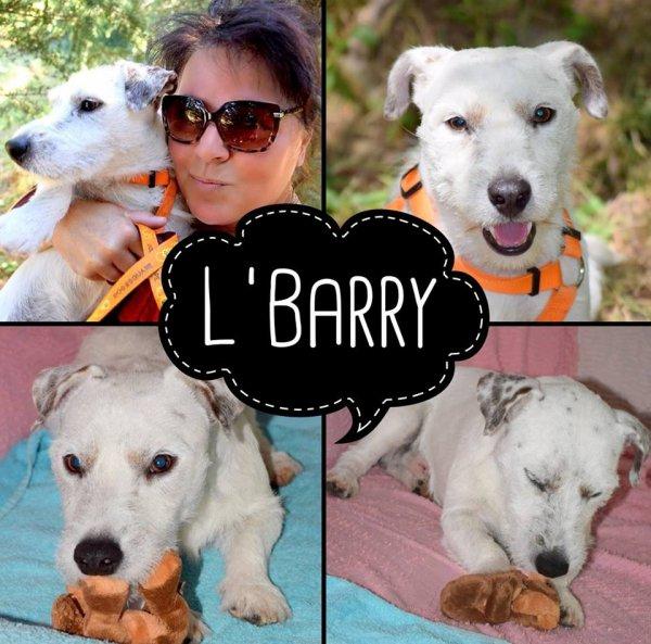 L'BARRY DU HAUT DE CRÉCY - BLACK AND WHITE - AMOUR