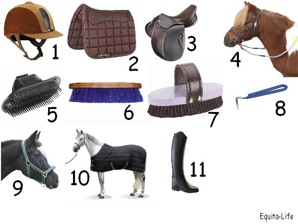 Les bases de l'équitation n°2