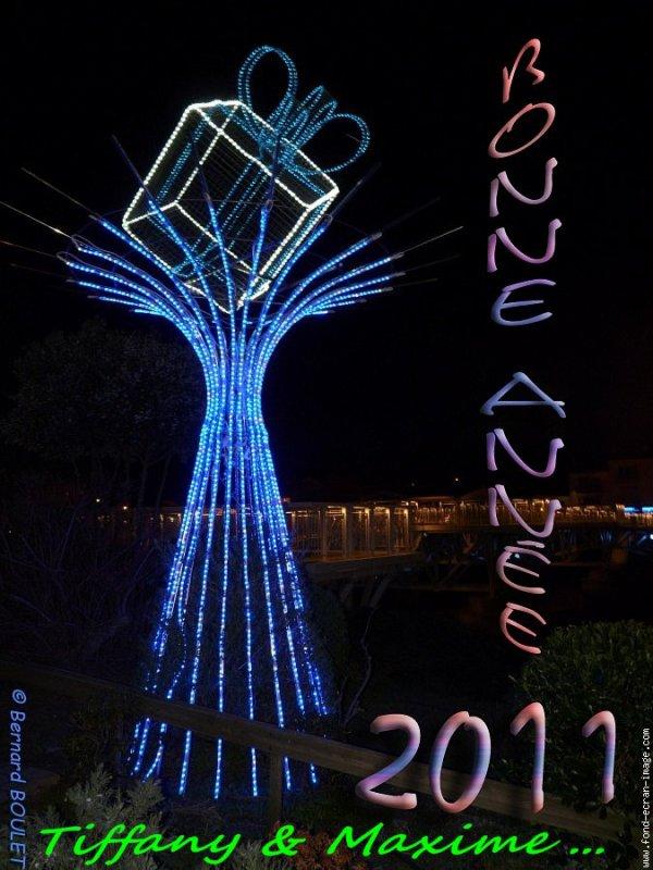 Bonne et heureuse année 2011 ....