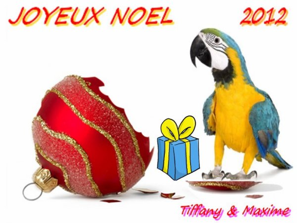 Nous vous souhaitons un joyeux noel 2012 !!!