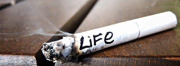 Vit pour ce qui te rend heureux, pas pour ce qui te détruit la vie !