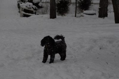 Il neige =(