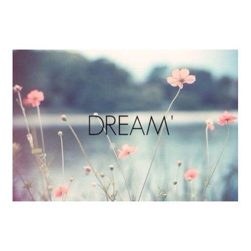 Ne renonce jamais à un rêve seulement parce qu'il te faudra beaucoup de temps pour l'accomplir. Le temps finit toujours par passer de toute façon