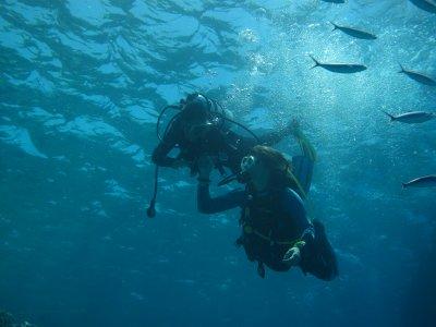 Kossal plongée Hurghada 28