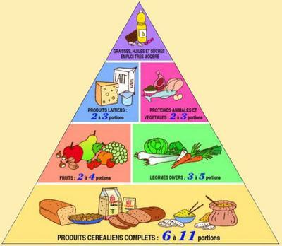 1 rappel des diff rents groupes d 39 aliments r gime r gime et encore r gime - Aliments riches en glucides ...