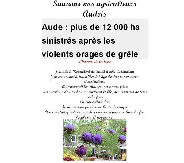 Sauvons nos agriculteurs Audois  Aude : plus de 12 000 ha sinistrés après les violents orages de grêle