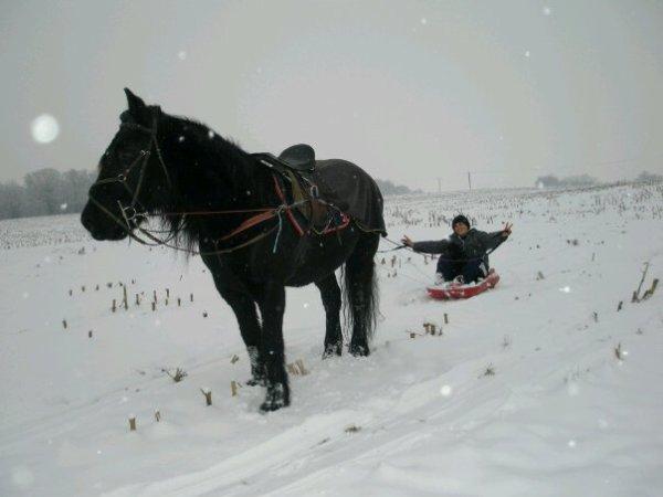 Mon 3eme cheval