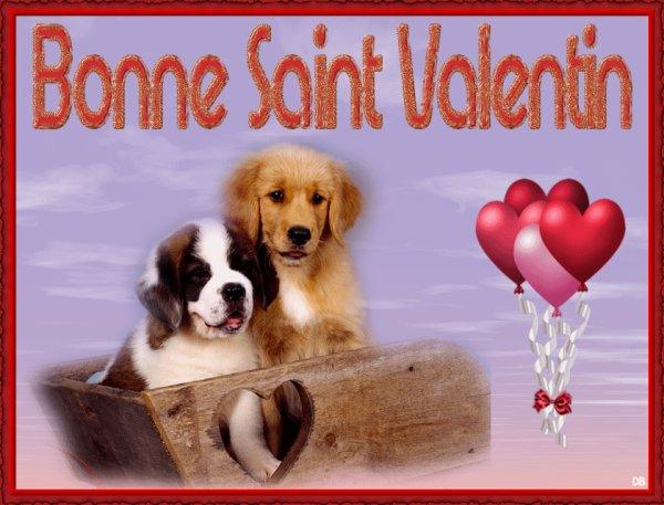 bonne fête de St valentin à toutes et à tous