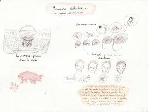 Brainstorming : La mémoire, le platre, le blanc...