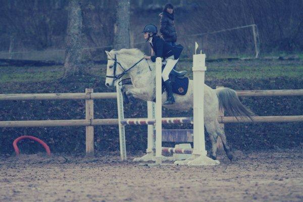 Le cheval est un cadeau de dieu à l'homme. ♥