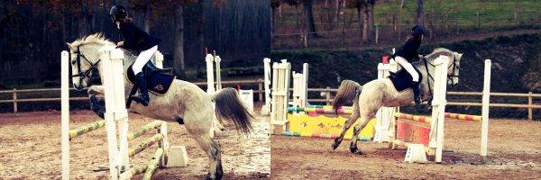 Le cheval ne nous appartient pas. La seule chose que nous possédons, c'est le devoir de nous en occuper correctement. ♥