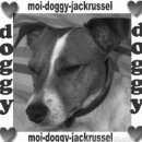 Photo de moi-doggy-jackrussel