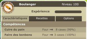 Boulanger lvl 100