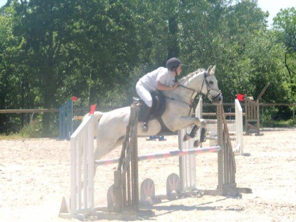 16.06.13 - Bessy Equitation