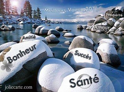 Bonnes fêtes de fin d'année et meilleurs voeux pour 2011 à toutes et à tous !