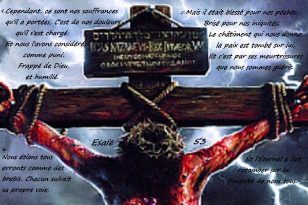 les meurtrissures des Jésus-Christ