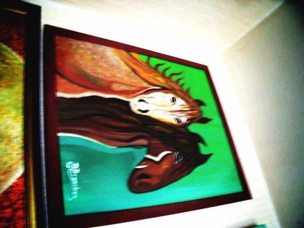 poneys indiens